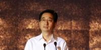 广西壮族自治区政府副主席张晓钦资料图。 林浩 摄 - 广西新闻