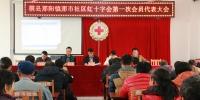 横县那阳镇那市社区召开红十字会第一次会员代表大会(图) - 红十字会
