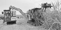 """《 农民日报 》:甘蔗机械化博览会助力糖业""""二次创业"""" - 农业机械化信息"""