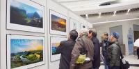 记录南宁城市发展变迁 首届南宁摄影艺术展举行 - 文化厅
