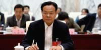 广西政府主席陈武参加南宁代表团审议政府工作报告 - 广西新闻