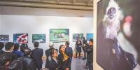 """图片新闻""""生灵其境——黄嵩和广西自然摄影展""""2月27日在自治区博物馆开展 - 文化厅"""