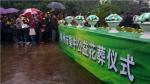 柳州市民政局花葬活动公告 - 民政厅